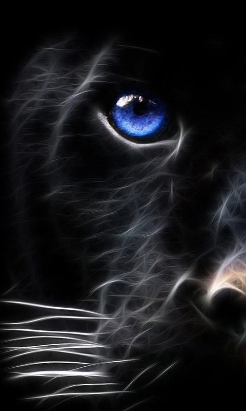 Cats the armitage effect - Phone animal wallpapers ...