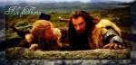 49-Thorin-Filidd