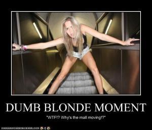 Dumb-Blonde-17