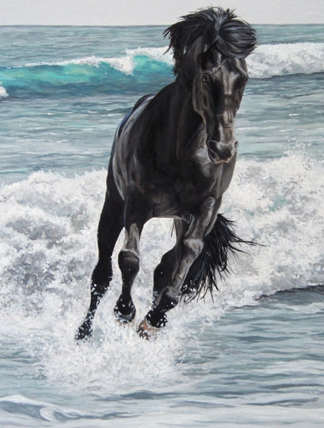 'The Black Stallion.' Well, two of them, actually. | the ...