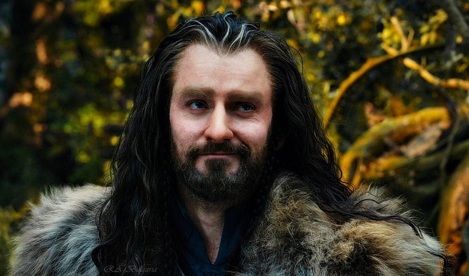 GRRRRRR. Word Press. Siccin' the awesomeness of Thorin on ...