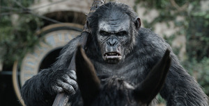 dawnoftheapes_spotlight_8