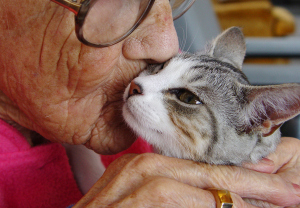 600px-woman-kissing-therapy-cat
